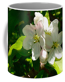 Apple Blossoms Coffee Mug