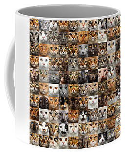 Coffee Mug featuring the photograph 100 Cat Faces by Sergey Taran