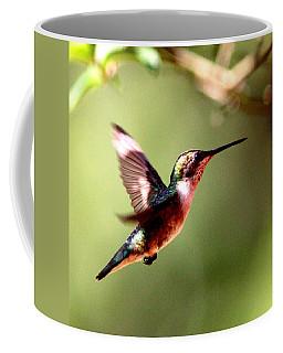103456 - Ruby-throated Hummingbird Coffee Mug