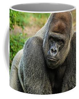 10898 Gorilla Coffee Mug by Pamela Williams