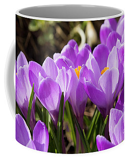 Purple Crocuses Coffee Mug