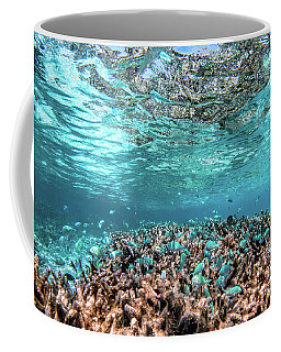 Underwater Coral Reef And Fish In Indian Ocean, Maldives. Coffee Mug