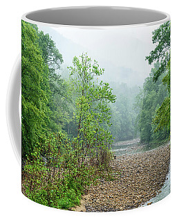 Coffee Mug featuring the photograph Williams River Summer Mist by Thomas R Fletcher