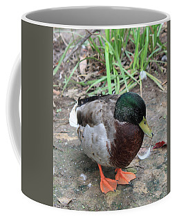 Duck Coffee Mug by Suhas Tavkar