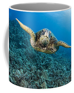 Green Sea Turtle Coffee Mug