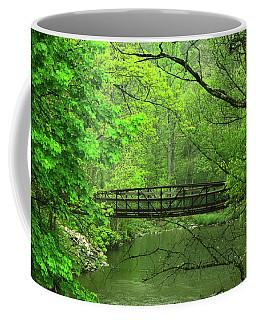 Jacobsburg State Park Pa Coffee Mug
