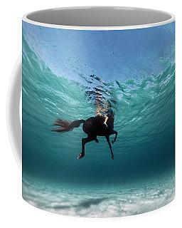 131016-8962 Coffee Mug