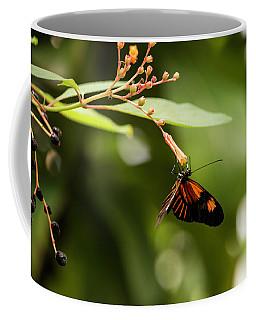 Coffee Mug featuring the photograph 1361-2 by Teresa Blanton