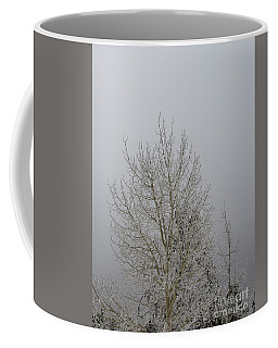 14 Degrees Coffee Mug