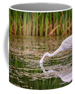 White, Great Egret Coffee Mug