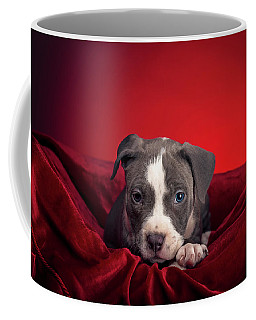 Coffee Mug featuring the photograph American Pitbull Puppy by Peter Lakomy