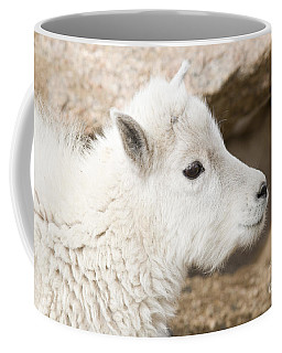Baby Mountain Goats On Mount Evans Coffee Mug