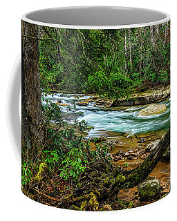 Coffee Mug featuring the photograph Back Fork Of Elk River by Thomas R Fletcher