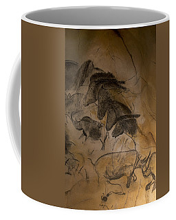 150501p086 Coffee Mug by Arterra Picture Library