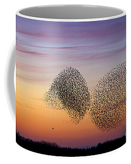 150501p254 Coffee Mug