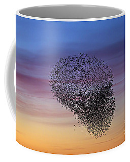 150501p260 Coffee Mug