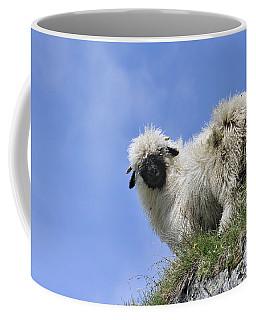 150827p302 Coffee Mug