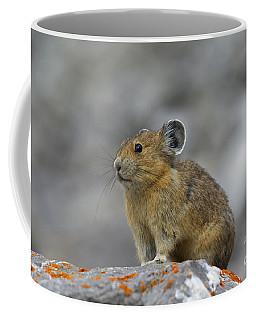 151221p238 Coffee Mug