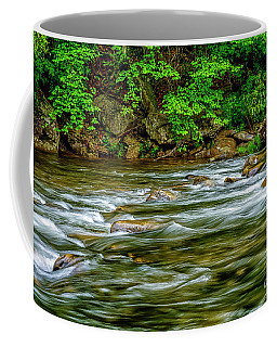 Coffee Mug featuring the photograph Williams River Spring by Thomas R Fletcher