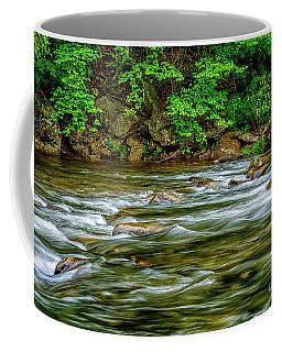 Williams River Spring Coffee Mug