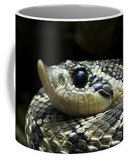 160115p141 Coffee Mug