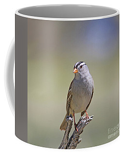 White-crowned Sparrow Coffee Mug