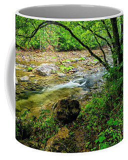 Coffee Mug featuring the photograph Williams River Summer by Thomas R Fletcher