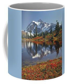 1m4208 Mt. Shuksan And Picture Lake Coffee Mug