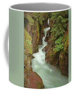 1m8115 Avalanche Gorge Mt Coffee Mug