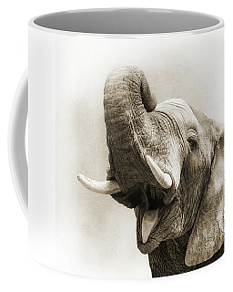 African Elephant Closeup Square Coffee Mug
