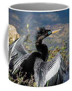 Anhiinga Coffee Mug