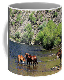Arizona Wild Horses Coffee Mug