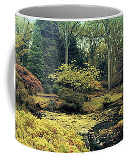 Coffee Mug featuring the photograph autumn  in Japanese park by Ariadna De Raadt
