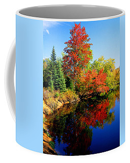 Autumn Splendor Coffee Mug