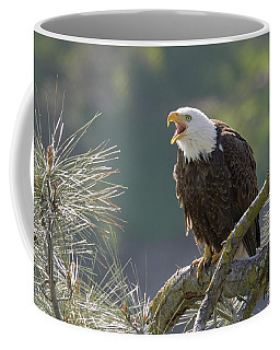 Bald Eagle Coffee Mug by Doug Herr