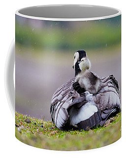 Coffee Mug featuring the photograph Barnacle Goose With Chick In The Rain by Nick  Biemans