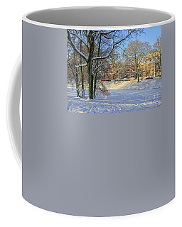 Beautiful Park In Winter With Snow Coffee Mug
