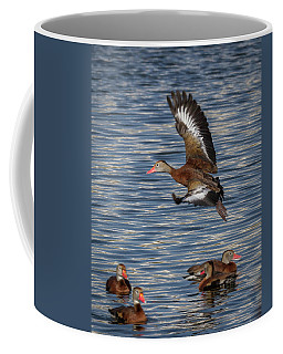 Black-bellied Whistling Duck Coffee Mug