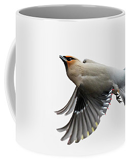 Coffee Mug featuring the photograph Bohemian Waxwing  by Mircea Costina Photography