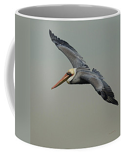Brown Pelican Coffee Mug