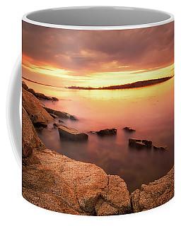 Cape Porpoise Coffee Mug