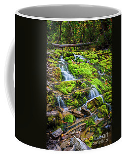 Coffee Mug featuring the photograph Cascading Waterfall by Elena Elisseeva