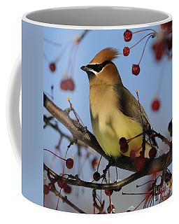 Cedar Waxwing... Coffee Mug