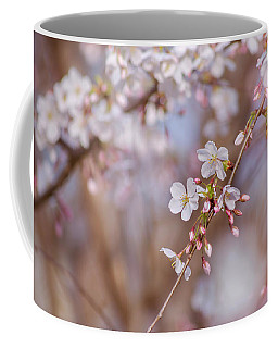 Coffee Mug featuring the photograph Cherry Blossom  by Rima Biswas