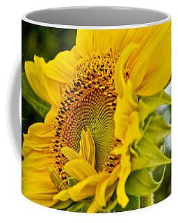Close-up Of Sunflowers Coffee Mug