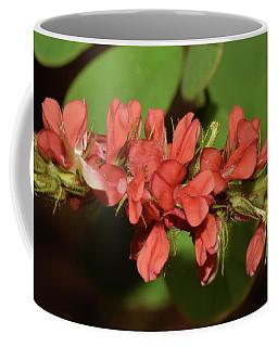 Creeping Indigo - Indigofera Spicata Coffee Mug