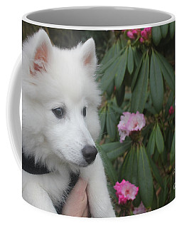 Coffee Mug featuring the photograph Daisy by David Grant