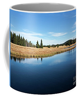 Dead Pond Coffee Mug by Michal Boubin