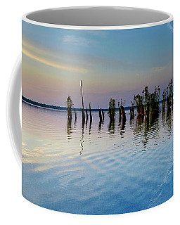 Coffee Mug featuring the photograph Dismal Swamp 2016 by Kevin Blackburn