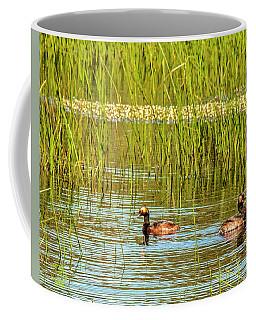 Eared Grebe Coffee Mug